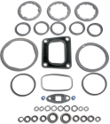 EGR Cooler Gasket Kit 4309491NX